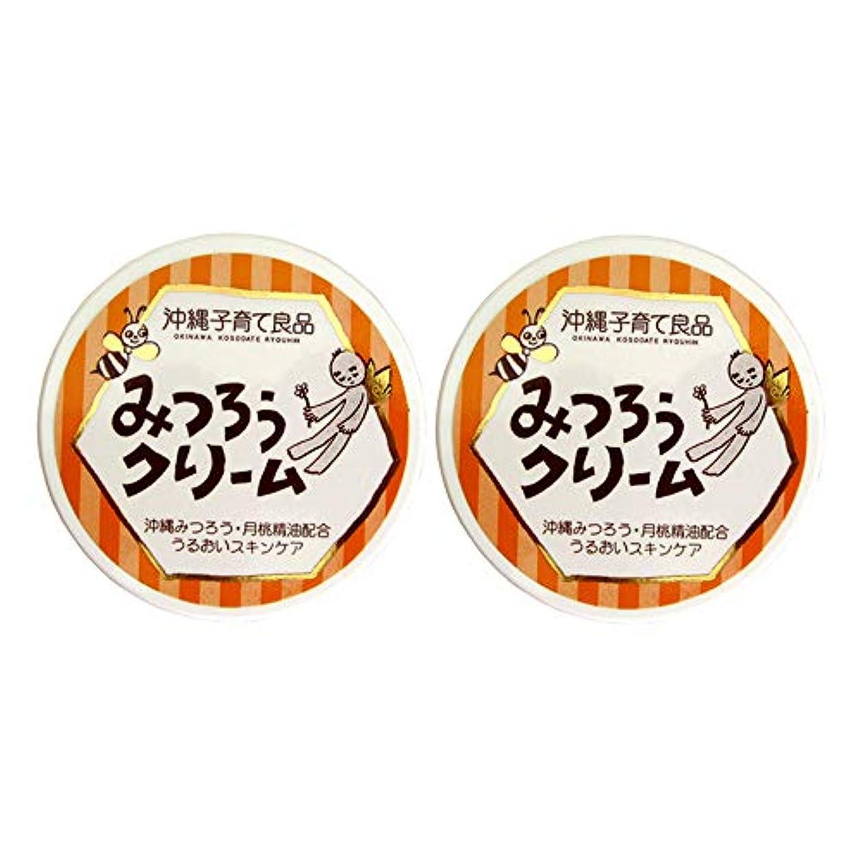 溶かす遠征忌まわしい沖縄子育て良品 みつろうクリーム セット 25g×2個