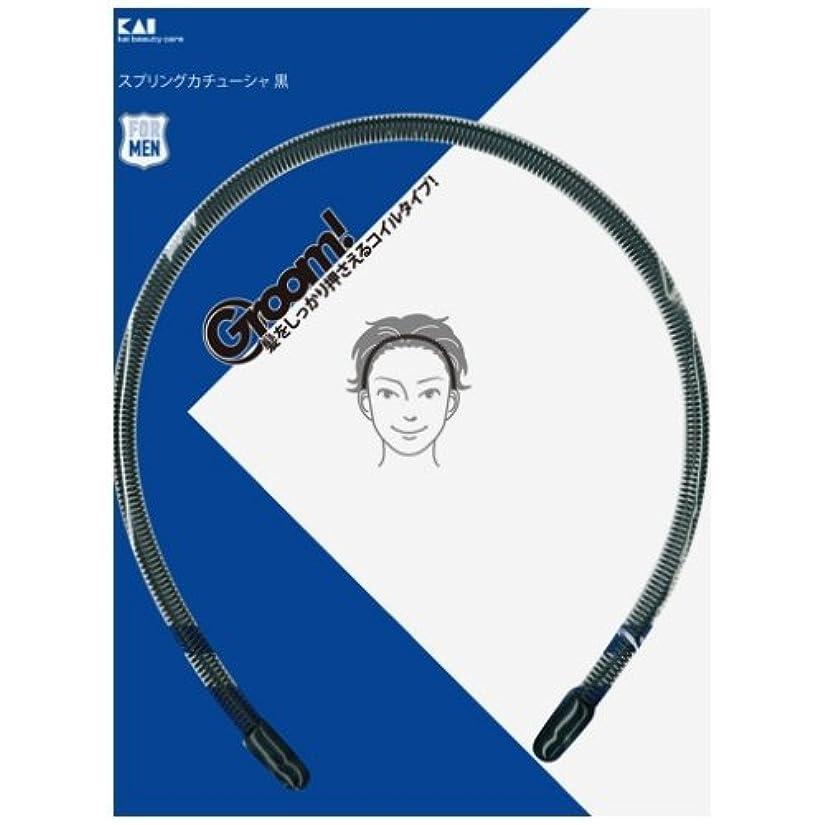 貫通する繁栄する冊子グルーム(Groom!)スプリングカチューシャ黒 HC3010