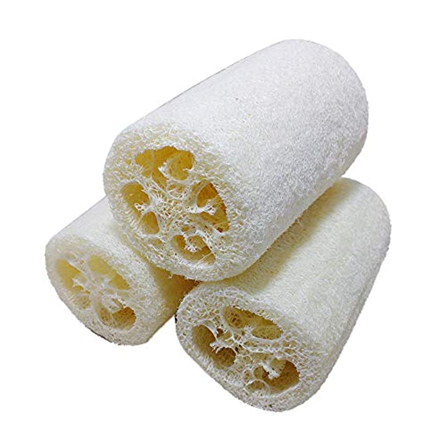 外交些細なインストールJIAMO 天然ヘチマポータブル バス ボディシャワースポンジスクラバー 3個り*12cm。天然の糸瓜入浴スポンジ、体スポンジ、身体スポンジブラシ、スポンジを浴びて新陳代謝を促進し、角質除去、入浴用品、美肌は全身の血液循環...