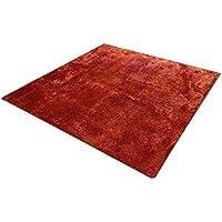 イケヒコ ラグ カーペット 3畳 無地 シャギー調 選べる7色 『ラルジュ』 オレンジ 約200×250cm(ホットカーペット対応)