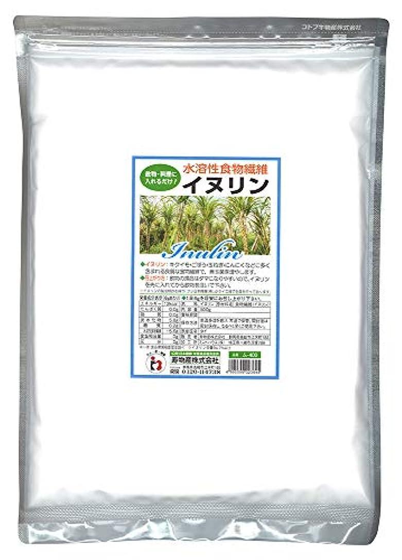無条件知覚的病気のイヌリン 500g 水溶性食物繊維 菊芋に多く含まれる食物繊維