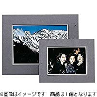 HAKUBA 写真台紙 フリーマット ワイド4切 サイズ グレー ワイド4切 MFM-W4GY