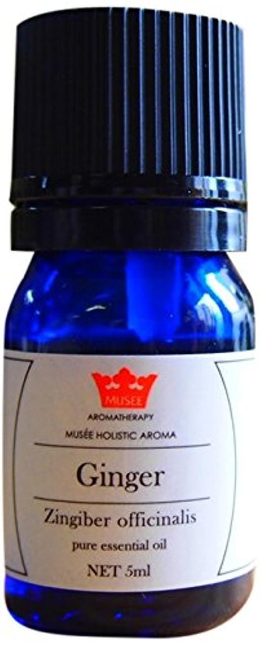 サーマル電気の焦げミュゼ ホリスティックアロマ エッセンシャルオイル ジンジャー 5ml