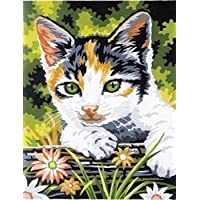 Bulk Buy: Reeves Junior Paint By Number Kits 9X12-Kitten (3-Pack) by Reeves [並行輸入品]
