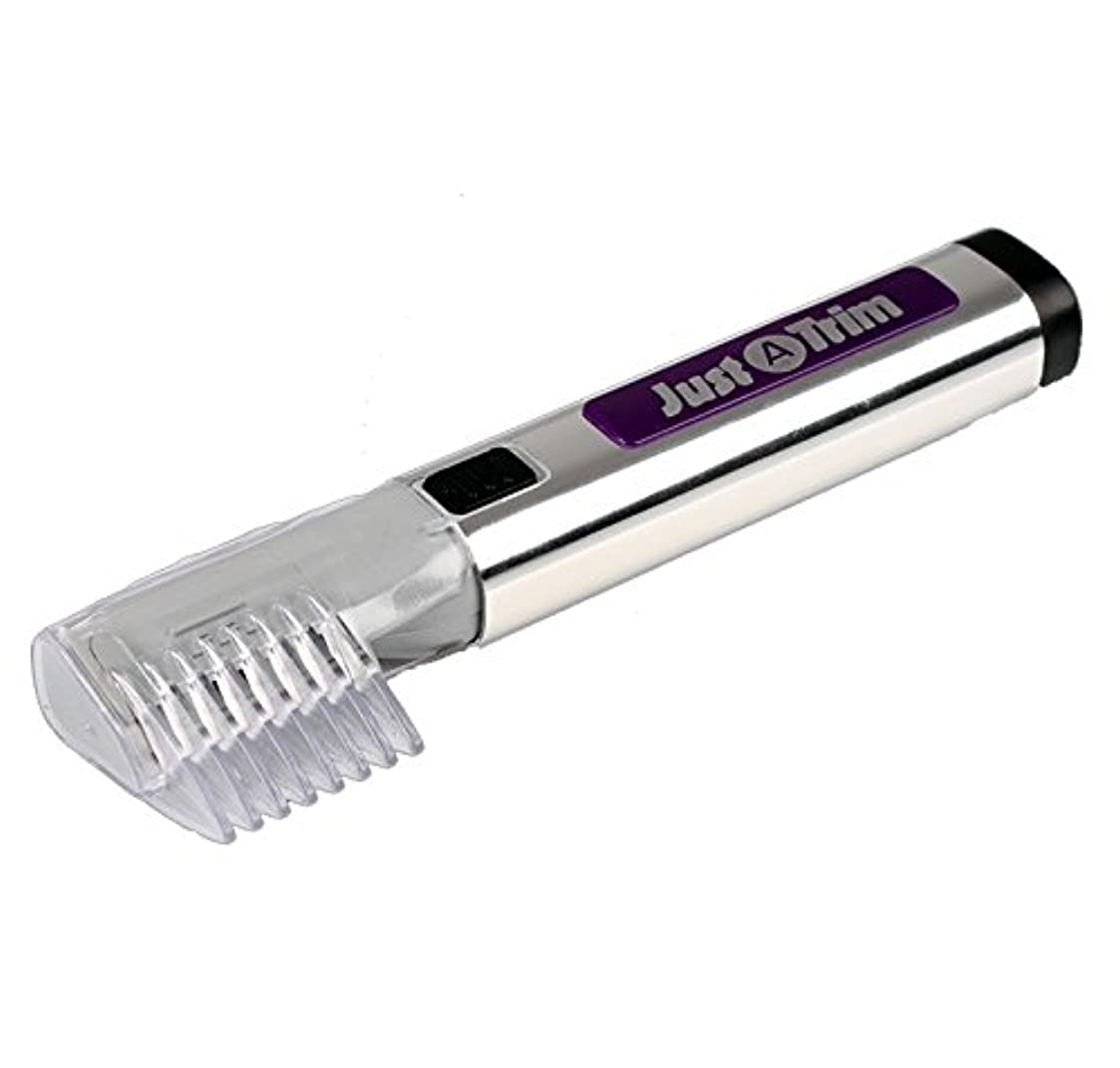 宇宙の切り離す幻滅無駄 毛 トリマー 電池 式 電動 カミソリ 眉毛 ヒゲ 整髪 SD-EH-113