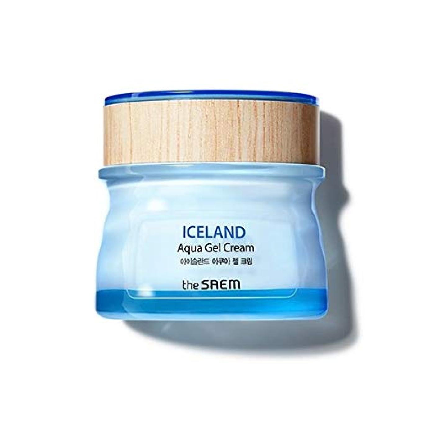カウンタこする後方The saem Iceland Aqua Gel Cream ザセム アイスランド アクア ジェル クリーム 60ml [並行輸入品]
