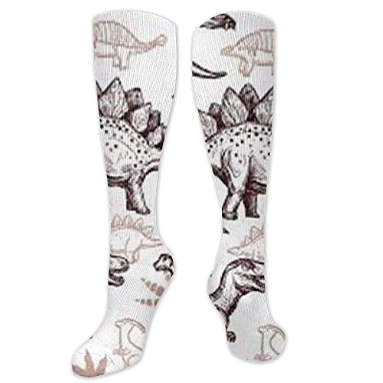 迷惑赤外線スタウト靴下,ストッキング,野生のジョーカー,実際,秋の本質,冬必須,サマーウェア&RBXAA Dinosaurs Footprint Socks Women's Winter Cotton Long Tube Socks Knee...