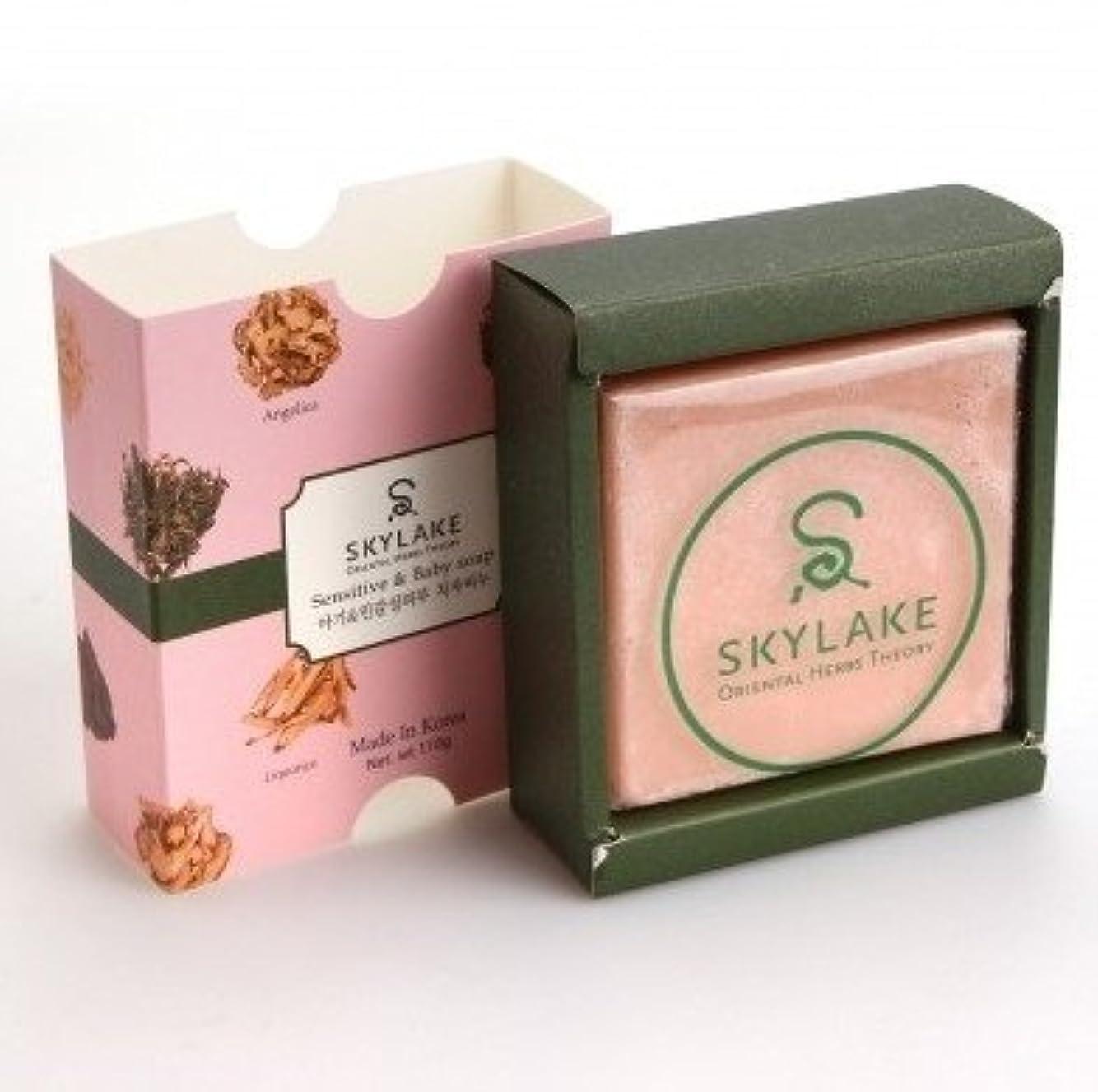 検査啓示時刻表ハヌルホス[Skylake] 漢方アロマ石鹸Oriental Herbs Theory Soap (子供?敏感肌用)