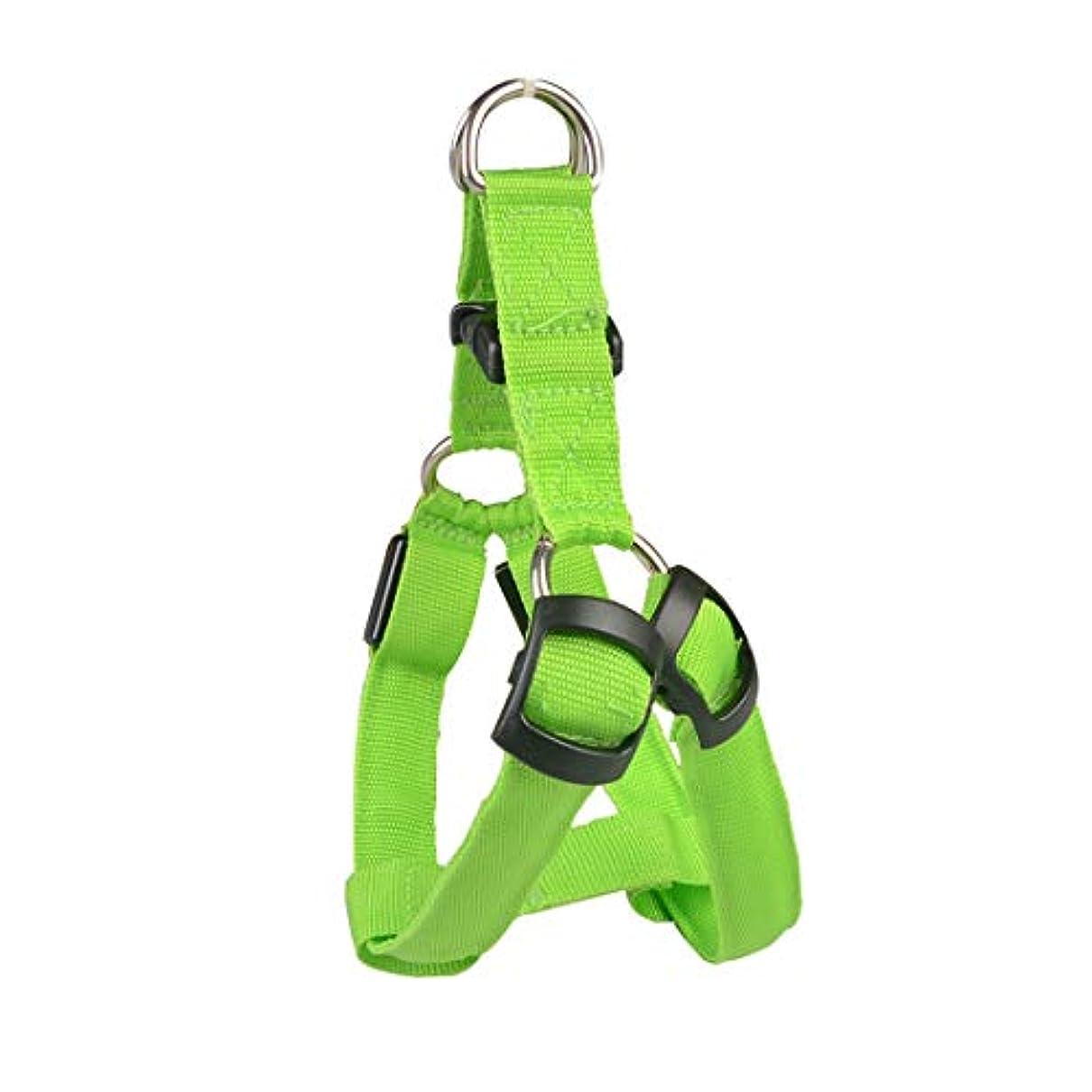 おそらく不毛の思われるKeriya Sende ハーネス 犬用シートベルト 犬のリード ペット用品 LEDライト ドッグ 中?大型犬 犬 首輪 犬 安全保護具 (Color : オレンジ, サイズ : L)