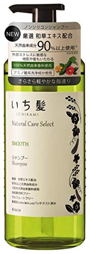 ビーズ火傷力学いち髪ナチュラルケアセレクト スムース(さらさら軽やかな指通り)シャンプーポンプ480mL ハーバルグリーンの香り