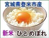 平成28年宮城登米市産新米ひとめぼれ30kg玄米