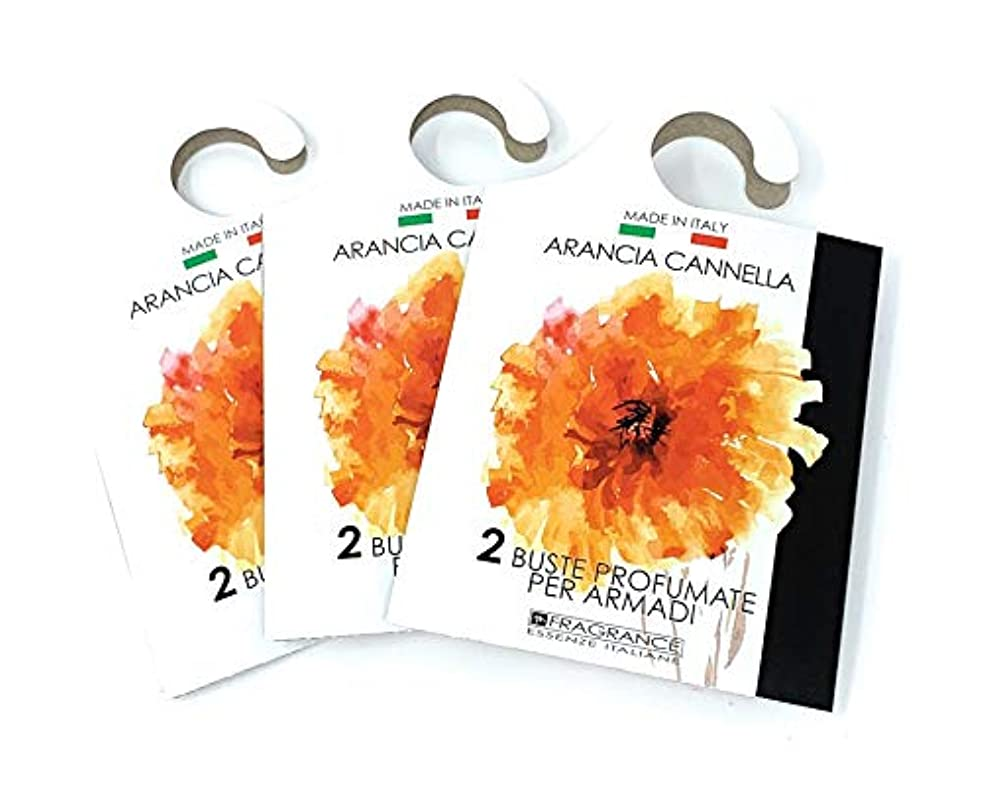 MERCURY ITALY 吊り下げるサシェ(香り袋) ACQUARELLO オレンジシナモンの香り/ARANCIA CANNELLA 2枚入り×3パック [並行輸入品]