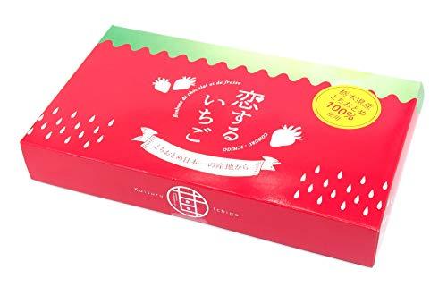 清風 恋するいちごスタンダード 栃木産とちおとめフリーズドライwithホワイトチョコレート 10個入 [k-s1]