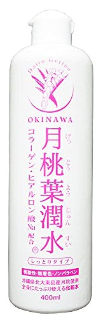 加入プラスチックオーガニック化粧水 月桃葉潤水 しっとりタイプ 400ml 1本