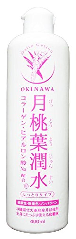年金受給者潤滑する組み合わせる化粧水 月桃葉潤水 しっとりタイプ 400ml 1本