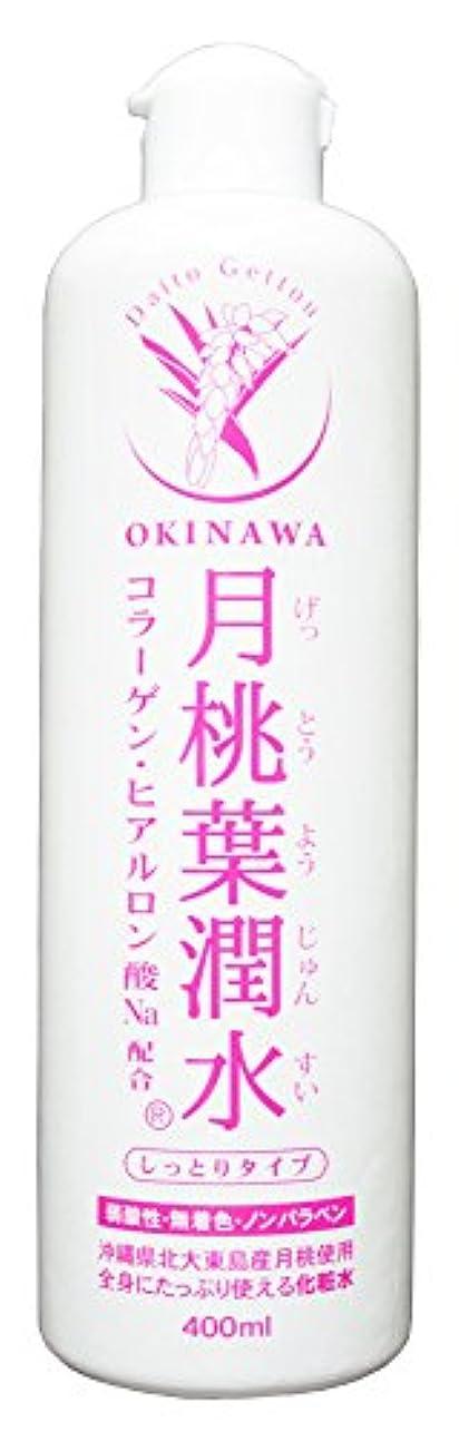 大量ありそう時間とともに化粧水 月桃葉潤水 しっとりタイプ 400ml 1本