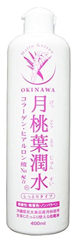 掃くプライバシー従来の化粧水 月桃葉潤水 しっとりタイプ 400ml 1本