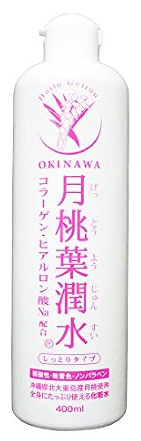 姉妹船形化粧水 月桃葉潤水 しっとりタイプ 400ml 1本