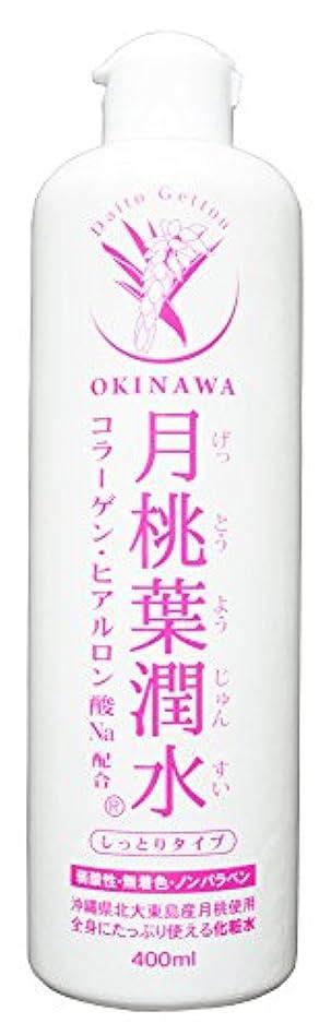 説明のれんふさわしい化粧水 月桃葉潤水 しっとりタイプ 400ml 1本