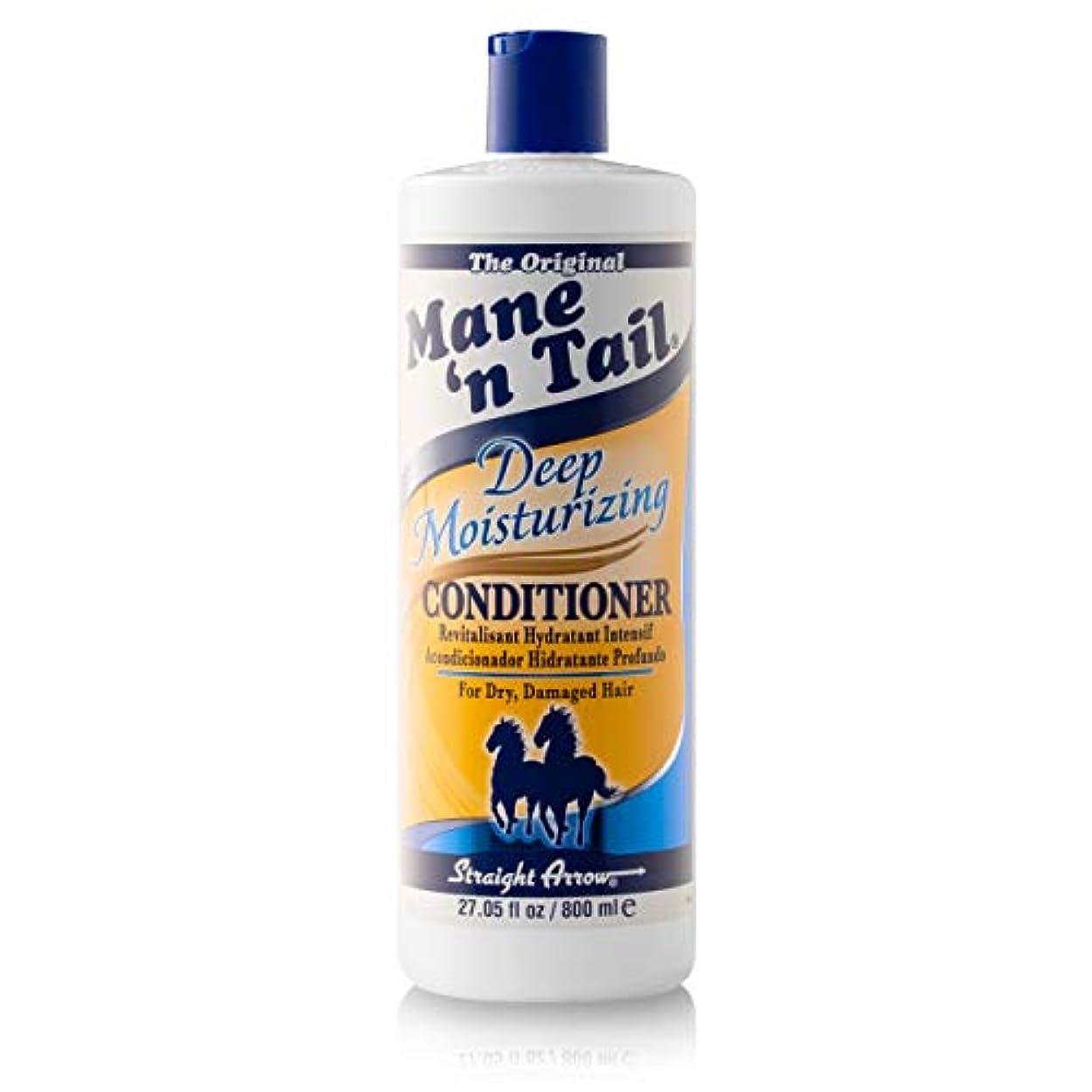契約するシャンパン征服者Mane 'n Tail 乾燥してダメージヘア27.05オンスを復元するために、ディープモイスチャライジングコンディショナー