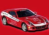 フジミ模型 1/24 RS-599 599GTB PANAMERICAN USA