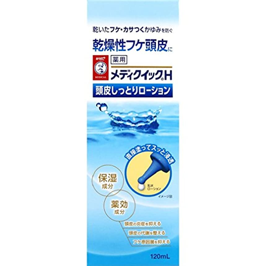 【医薬部外品】メディクイックH フケ原因菌を抑える頭皮しっとりローション 120mL
