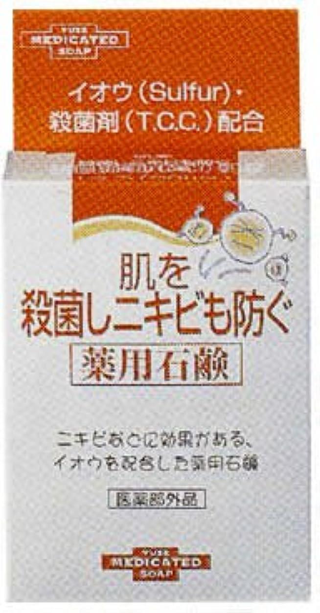 薬を飲むチャールズキージング化石肌を殺菌しニキビも防ぐ薬用石鹸 110g