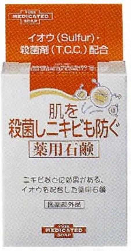 ピラミッド無関心一致する肌を殺菌しニキビも防ぐ薬用石鹸 110g