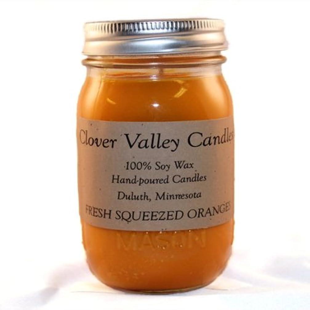 期間パンチフレットFresh Squeezed Oranges Pint香りつきSoy Candle byクローバーValleyキャンドル