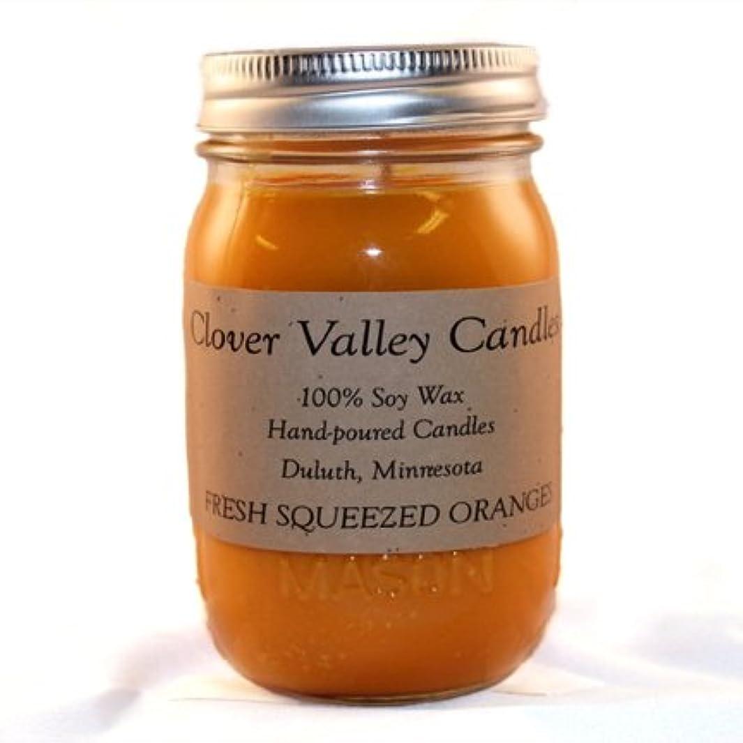 緑意外マーキーFresh Squeezed Oranges Pint香りつきSoy Candle byクローバーValleyキャンドル