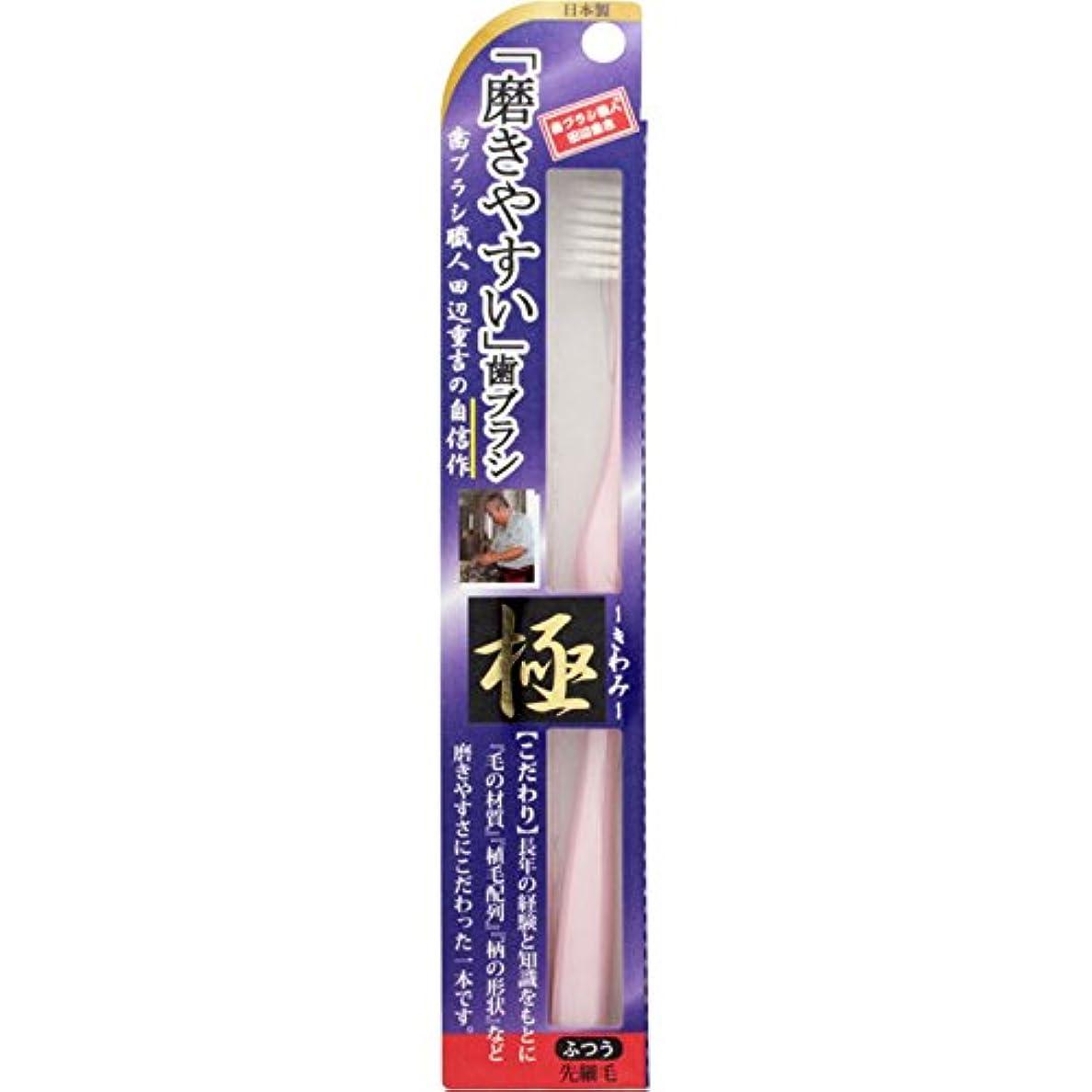 深める複製生産性磨きやすい歯ブラシ 極 LT-22