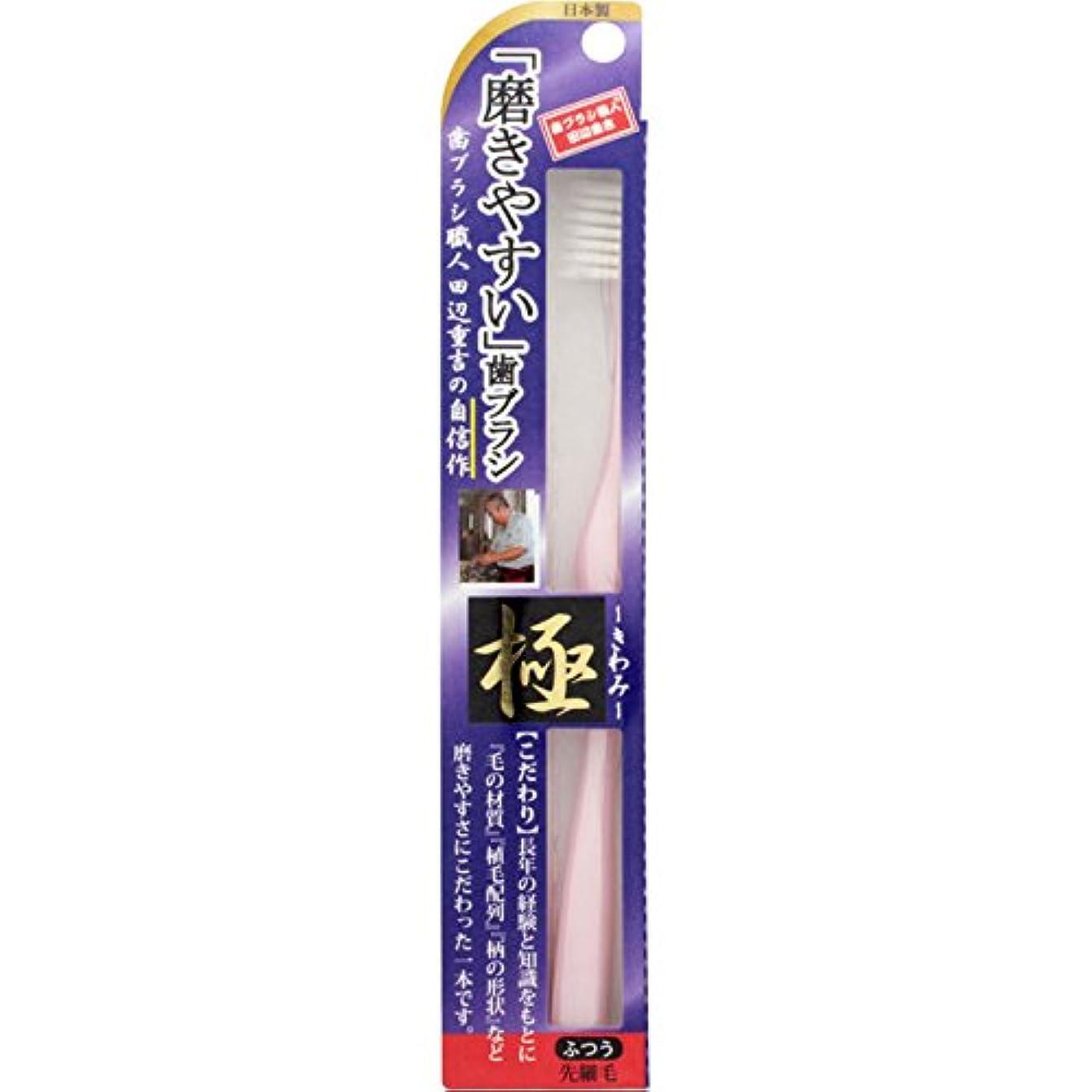 ターミナルアベニューずらす磨きやすい歯ブラシ 極 LT-22