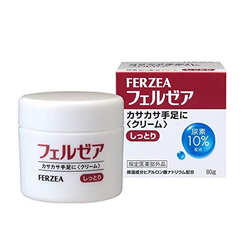 メタリック言い聞かせる転用[指定医薬部外品]フェルゼア クリームM 尿素10%配合 80g