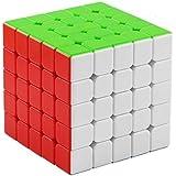 XMD 磁石キューブ 魔方 立体パズル【磁石内蔵】 ポップ防止 マグネットパズル マグネットブロック Magnetic Magic Cube (磁石キューブ 5x5)