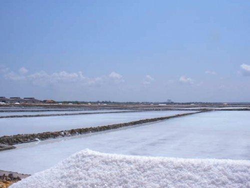 皇帝塩1kg(無添加 天然塩 )海水天日干し