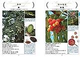 大人のフィールド図鑑 原寸で楽しむ 身近な木の実・タネ 図鑑&採集ガイド 画像
