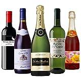 【Amazonワインエキスパート厳選】シャンパーニュ入り パーティーまるごと ワインセット 750ml×5本 [ 3750ml ]