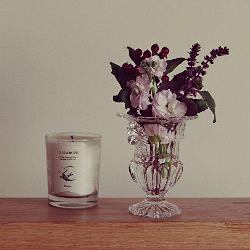 AMELIA 繊細なレリーフが特徴のトラディショナルデザイン・花瓶 フラワーベース ガラス