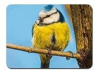 鳥、黄色、青羽、枝、幹 パターンカスタムの マウスパッド 動物 (26cmx21cm)