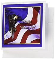 ビバリーターナーVeterans Dayデザイン–Veterans Day Bald Eagle Withアメリカ国旗–グリーティングカード Set of 12 Greeting Cards