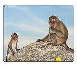 17P03792高品質の創造性マウスパッドのゲームマウスパッドのサル