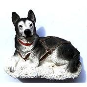 シベリアン ハスキー犬の 3 D ガレージ グッズ冷蔵庫マグネット