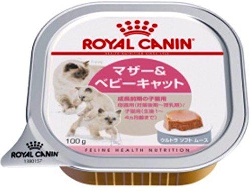 【ロイヤルカナン】FHN -WET ベビーキャット 猫用 100g×24個