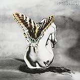 アゲハ(初回限定盤)(DVD付)(音楽/CD)