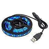 Kaito Denshi(海渡電子) USB 防水 LED テープ ライト 青色 1チップ(白ベース) 50cm DC5V