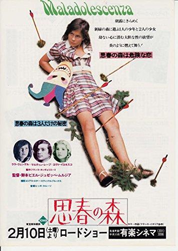 映画チラシ(洋画)思春の森