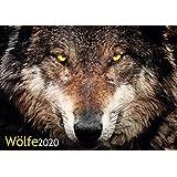 Wolves 2020 Calendar