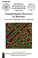 Transformation Processes in Minerals (Reviews in Mineralogy & Geochemistry)