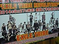 B2大 ポスター 横Ver 1 エグザイル トライブ EXILE TRIBE