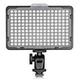 Neewer ビデオライト176 LED球 超高輝度 調光可能 3200-5600K 1/4インチスレッドマウント付き Canon、Nikon、Pentax、Panasonic、Sony、Samsung、Olympusおよび他のデジタル一眼レフカメラに使える